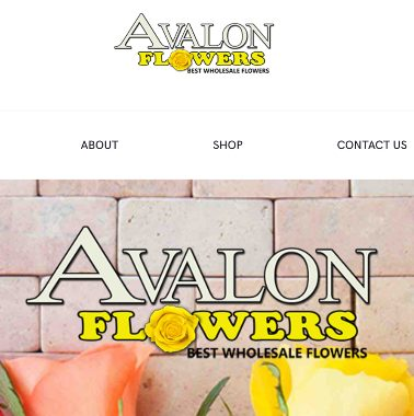 Wholesale Florist website